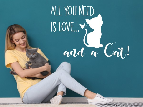 Wandtattoo All you need - CAT